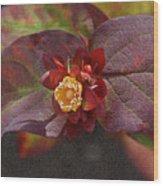 Flower Leaves Wood Print
