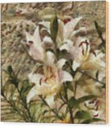Flower - Lily - White Lily Wood Print