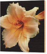 Flower Wood Print by M Montoya Alicea