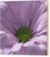 Flower Macro Beauty 3 Wood Print