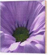 Flower Macro Beauty 4 Wood Print