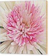 Flower Macro. Wood Print