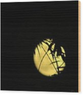 Flower Moon 05 03 15 Wood Print