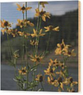 Flower Mountain View Wood Print