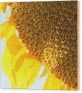 Flower Of The Sun Wood Print