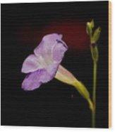 Flower On The Vine Wood Print