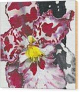 Flower Orchid 11 Elena Yakubovich Wood Print by Elena Yakubovich