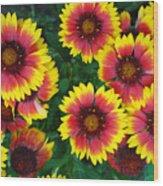 Flower Patch Wood Print