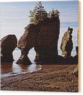 Flower Pot Rocks On The Beach, Hopewell Wood Print