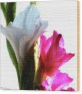 Flower Power 7 Wood Print