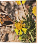 Flower Power Bug And Butterfly Wood Print