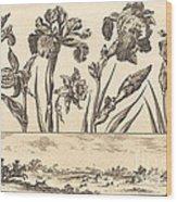 Flower Print No.3 Wood Print