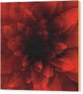 Flower  Red Shade Wood Print