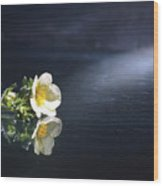 Flower Reflection Wood Print