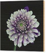 Flower Rhythm 1 Wood Print