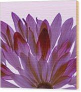 Flower Rise- Lavender Wood Print