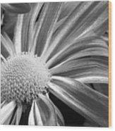 Flower Run Through It Black And White Wood Print
