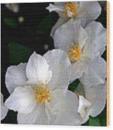 Flower Series Wood Print