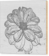 Flower Sketch Wood Print