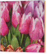 Flower - Tulip - A Young Girls Delight Wood Print
