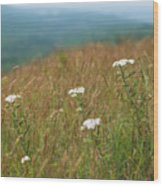 Flower View Of Mountains Wood Print