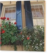 Flower Window In Charleston Sc Wood Print
