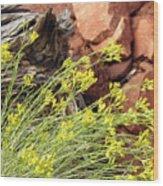Flower Wood And Rock Wood Print