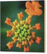 Flower2 Wood Print