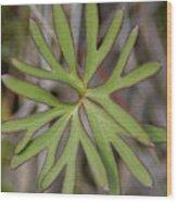 Flowerantlers Wood Print