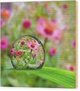 Flowerdrop Wood Print