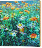 Flowerfield Wood Print
