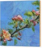 Flowering Apple Branch Wood Print