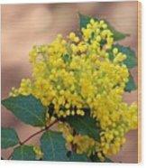 Flowering Plant 032514a Wood Print