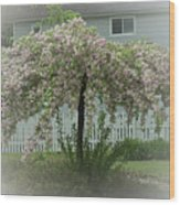 Flowering Tree By Earl's Photography Wood Print