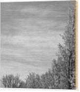 Flowering Trees Wood Print