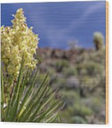 Flowering Yucca Wood Print