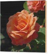 Flowers 112 Wood Print