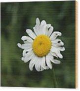 Flowers 14 Wood Print