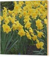 Flowers 146 Wood Print