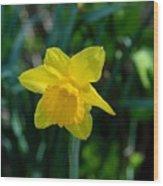 Flowers 147 Wood Print