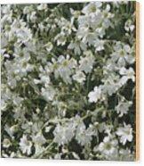 Flowers 16 Wood Print