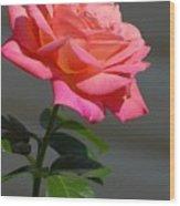 Flowers 186 Wood Print