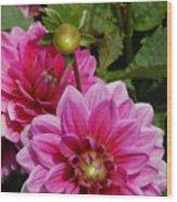 Flowers 225 Wood Print