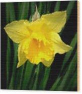 Flowers 26 Wood Print