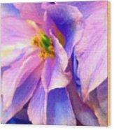 Flowers 31 Wood Print