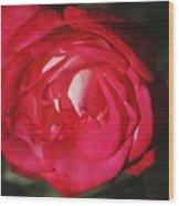 Flowers 4 Wood Print