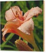 Flowers 52 Wood Print