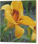 Flowers 54 Wood Print