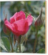 Flowers 63 Wood Print