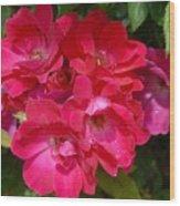 Flowers 732 Wood Print